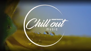 BEST Essential Chill - Eclectic pearls (relaxing chill out and lounge  music mix) 2017