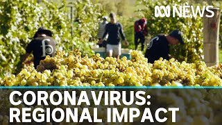 Regional small businesses hit hard by fallout of coronavirus pandemic   ABC News