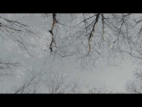 Высоцкий - Звезды - Стих (Моё прочтение) Звезды В.С.Высоцкий
