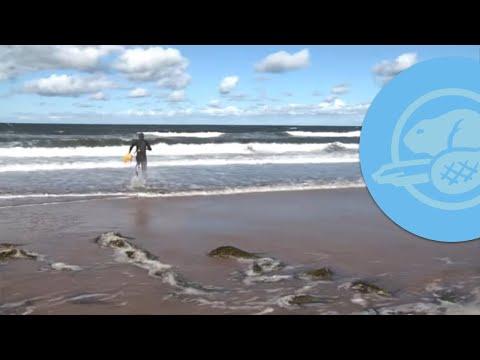 hqdefault - Pourquoi les vagues se brisent-elles à l'approche du rivage ?