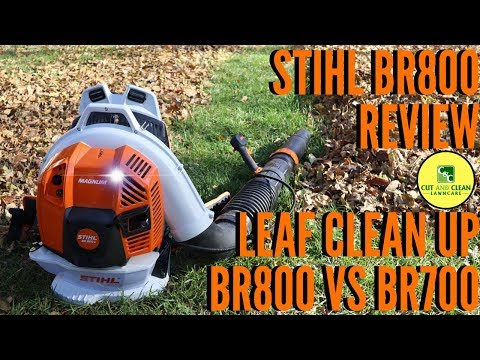 STIHL BR800 Blower Review   BR800 vs BR700   Fall Leaf Clean