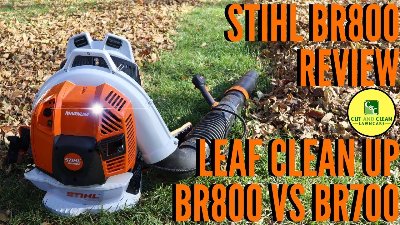 STIHL BR800 Blower Review   BR800 vs BR700   Fall Leaf Clean Up
