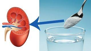 So kannst du deine Nieren auf natürliche Weise regenerieren!