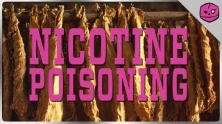 Nicotine Poisoning: The Killer Toxin Concealed in Tobacco