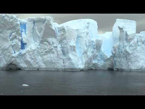 Antarctique   Expédition Canal Neko Harbour 01