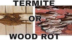 Is That Termite Damage? Wood Rot Damage? 😨 How to Tell the Difference