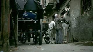 HD بالورقة والقلم. ريهام عبد الحكيم