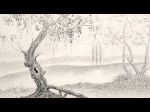 How to Draw a Tree - Landscape