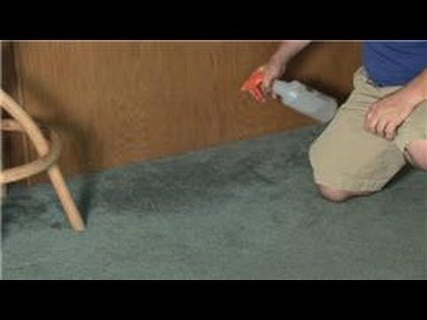 Carpet Cleaning : How To Remove Mildew U0026 A Musty Smell From Carpet