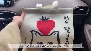 [Vlog] 딸기모찌꼬마김밥돈까스수제비는 사드세요...…