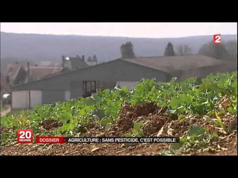 Infos de France 2, 20h, 15-04-13, Agriculture sans engrais, si possible.