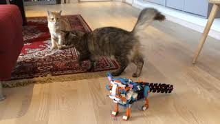 Frankie vs. Cats  - LEGO BOOST