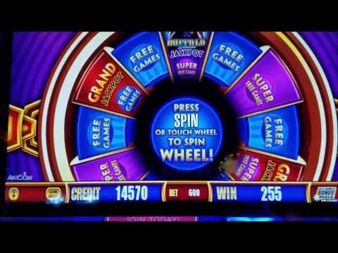 Wonder 4 Buffalo Slot Machine Bonus Compilation!!!!!!! - 동영상