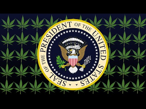 Find Out Which Presidential Candidate is Pro Marijuana Legalization
