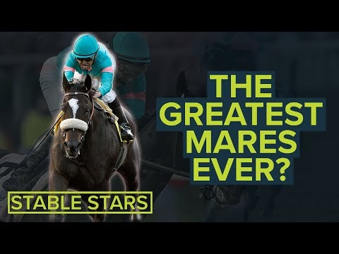 ENABLE, WINX & ZENYATTA | HORSE RACING'S TOP 10 BEST EVER MARES