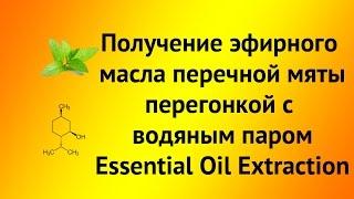 Получение эфирного масла перечной мяты перегонкой с водой (Essential Oil Extraction)(Видео сделано для ресурса http://forum.rhbz.org/ Модная насадка http://goo.gl/24gCWi., 2015-09-23T10:54:52.000Z)