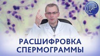 Фото РАСШИФРОВКА СПЕРМОГРАММЫ. Показатели спермограммы их значение и расшифровка. Живулько А.Р.