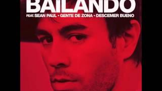 Enrique Iglesias - Bailando(Gregor Salto Remix)