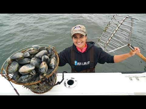 Coastal Foraging For Clam Dinner!! CATCH And COOK!