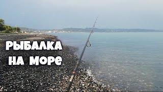 Рыбалка в Абхазии. Что ловится на море.