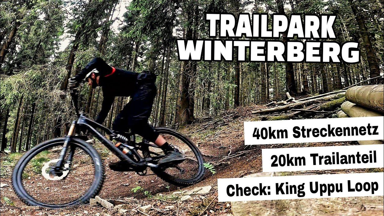 Trailpark Winterberg   Leichte Endurotrails die richtig Spaß machen   Leo Kast