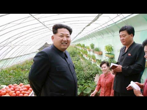 A rare peek inside North Korea