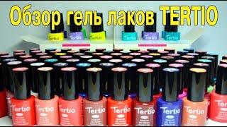Гель лак Тертио TERTIO   Выкраска