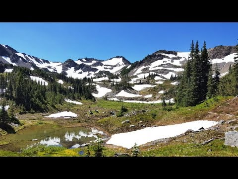 Olympic National Park (Grand Valley and Toleak Point) Backpacking Trip