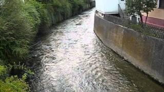 Wannweil: Echaz mit normalem Wasserstand am 12.07.2011
