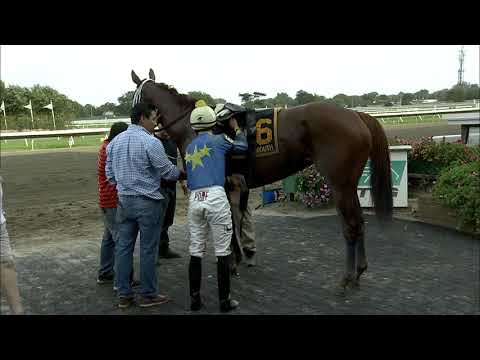 video thumbnail for MONMOUTH PARK 9-14-19 RACE 9