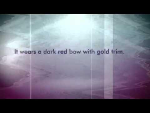 Dan Dee Collectors Dark Red Plush Shiny Sitting Teddy Bear EUC Stuffed Animal
