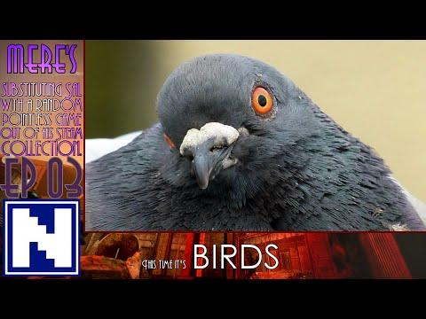S1E3 Mere's sSwarpG - BIRDS