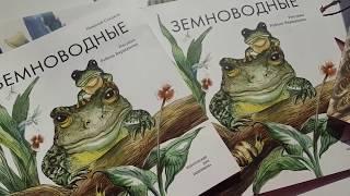 Обзор детских книг   Книги о животных   НАУЧПОП   Для младшего школьного возраста   Пифагоровы штаны
