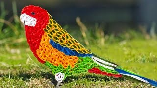 quilling artwork | Hand made Easy making beautiful parrot