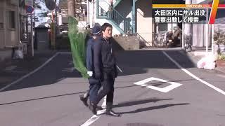 12月5日から6日にかけて、東京・大田区内でサルの目撃情報が相次いで寄...
