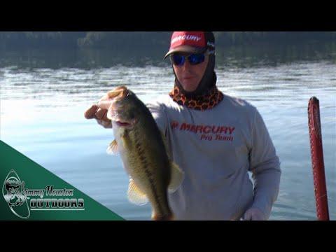 deep-water-and-grass-line---big-bass-on-guntersville