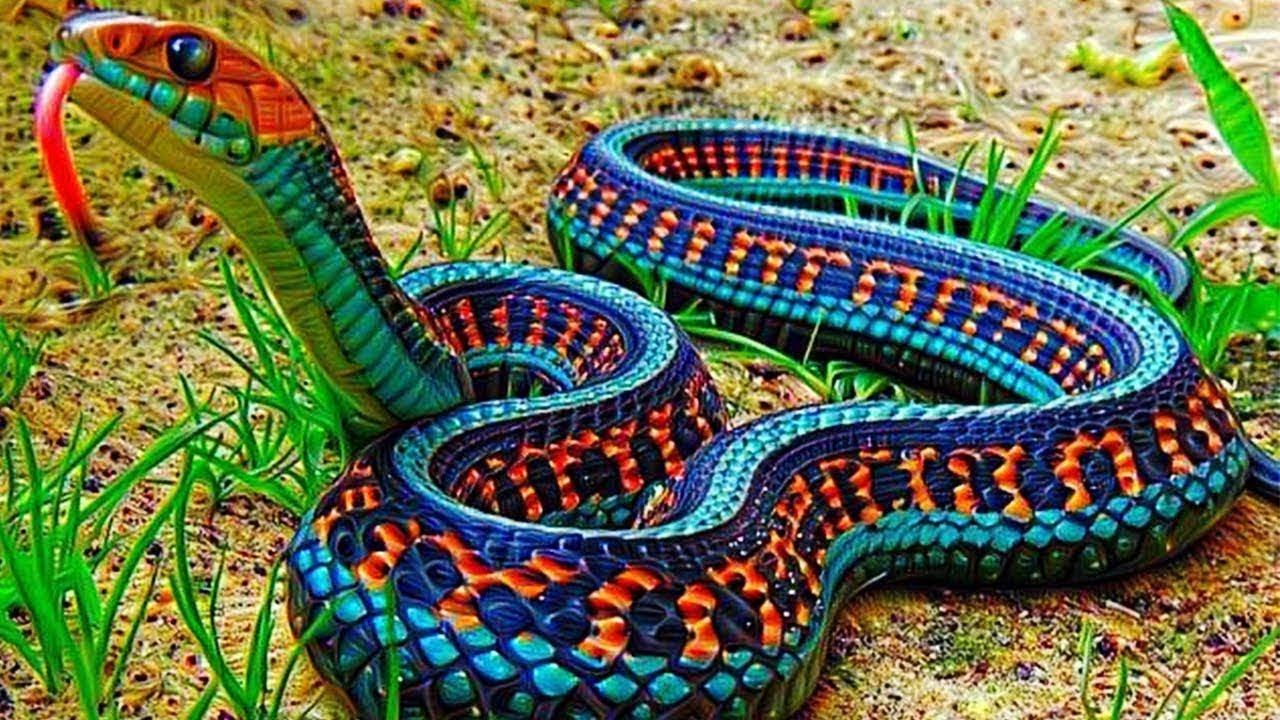 Download 10 Most Venomous Animals In The World