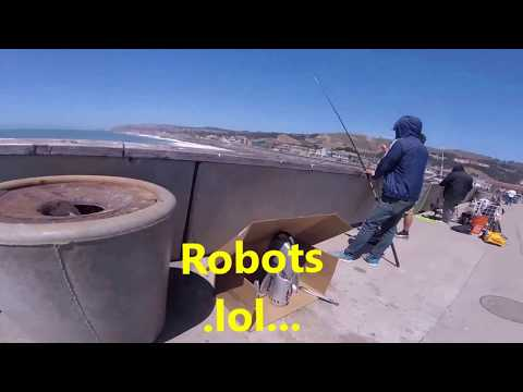 CrabZilla Fathers Day 2017 Weekend, Bigfoot, Pacifica pier fishing report.lol