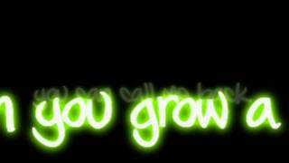 Ke$ha - Grow A Pear Lyrics Video