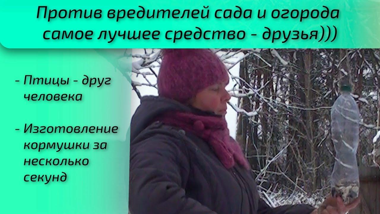 Против вредителей сада и огорода самое лучшее средство - друзья)))