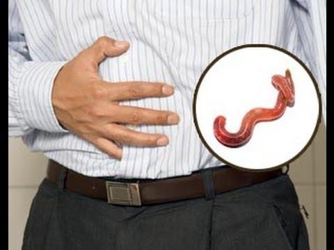 atencion-¿has-visto-alguna-vez-una-lombriz-intestinal?