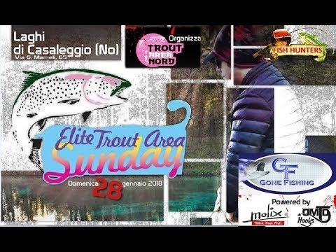 Laghi di Casaleggio : Elite Trout Area Sunday -Sfida sino all'ultima Golden Trout