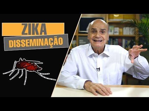 Zika virus | Disseminação