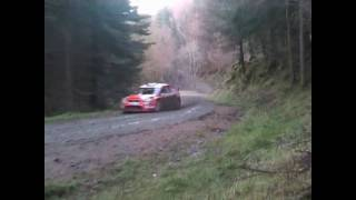 WALES RALLY GB 2010. Radnor stage.
