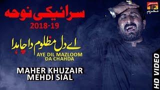 Ya Muntaqim || Maher Khuzair Mehdi Siyal || New Noha || TP Moharram