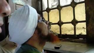 Habib Umar @ Sayyidah Zeinab