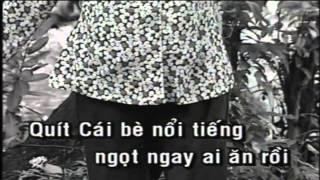 Karaoke Hanh Trinh Tren Dat Phu Sa   Phi Nhung