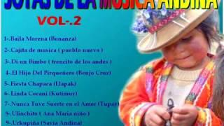 lo mejor de la musica andina - seleccion especial vol-.2
