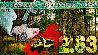 Находки в дремучем лесу! 6.63