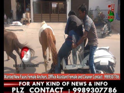 Horse Hulchal in Tolichowki Area 7H News | Hyderabad